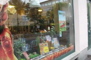Comicgarten_2015_Schaufenster_CityComics_17